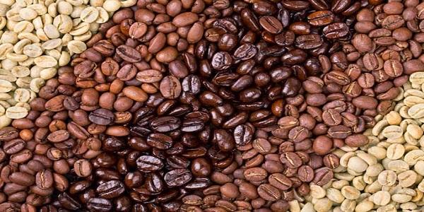 فروش دانه قهوه خام