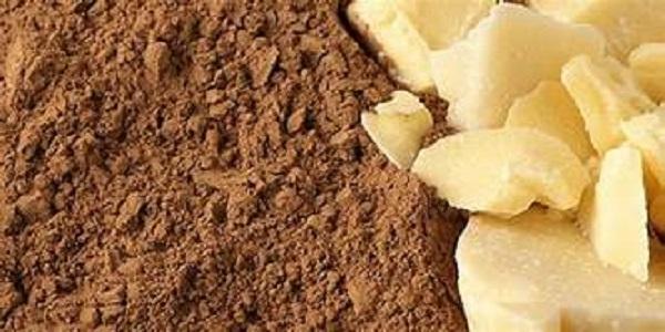 پودر و کره کاکائو خرید
