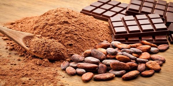 تامین پودر کاکائو تولیدی های شکلات