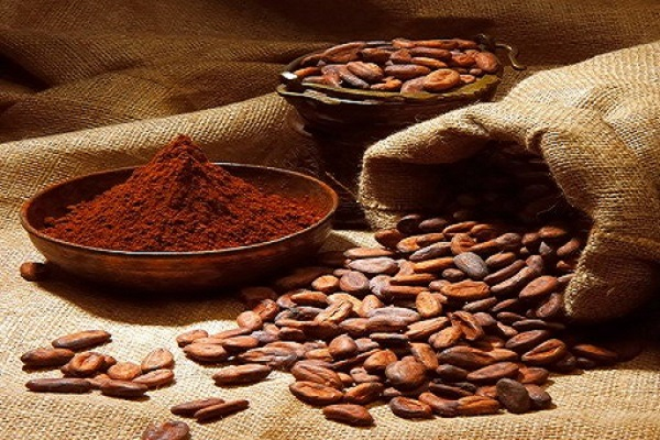 خرید و فروش عمده پودر کاکائو