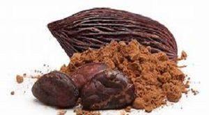 خرید و فروش عمده پودر کاکائو اسنو