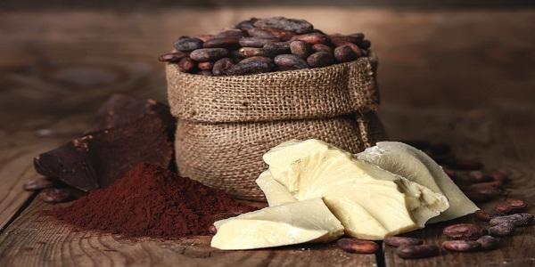 تامین پودر و کره کاکائو تولید کنندگان شکلات