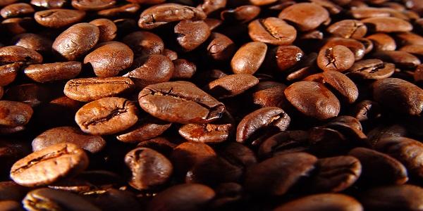 فروش عمده انواع دانه قهوه برای میکس